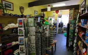 Failte Irish Import Shop: Lexington, KY