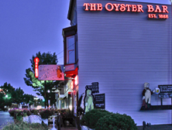 oyster 1 300x228