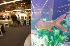 Tennessee Aquarium_River Journey Meeting Space