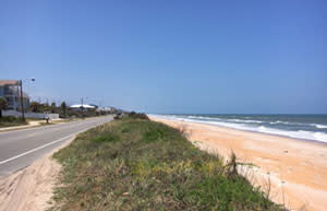 Typical Flagler Beach Sea Dune