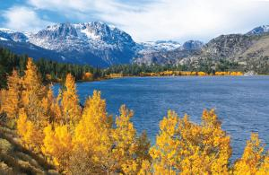 Sightseeing: June Lake Fall