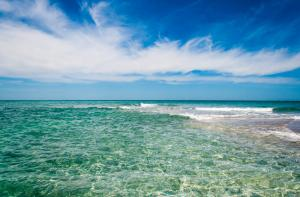 Top 10 Reasons For An Englewood Beach Neener Vacation