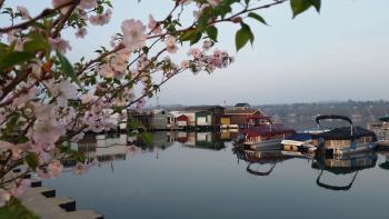 Boat houses sit along Canandaigua city's pier