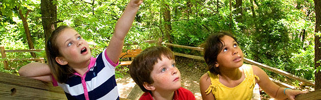 Children enjoying Martin Nature Park