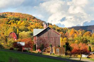 Fall foliage surrounds a barn in Naples