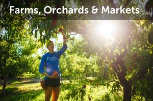 Farms, Orchards & Markets