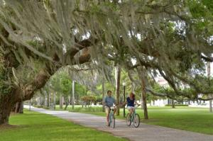 Biking in the Golden Isles