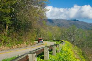 Newfound Gap Highway In Great Smoky Mountains National Park, Tennessee