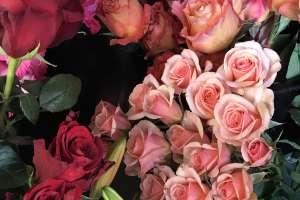 Bloom Flower Shop & Market