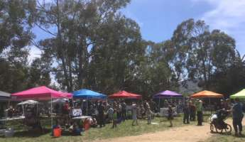 29th Annual Earth Day Fair & Music Fest