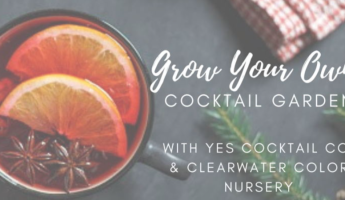 Grow Your Own Holiday Cocktails