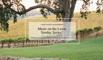 HammerSky Vineyards: Music on the Lawn