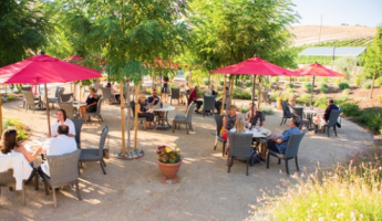Live Music at Parrish Family Vineyards