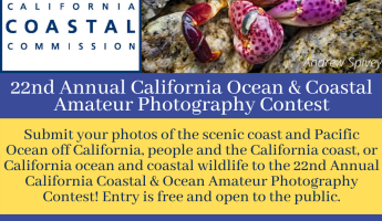 22nd Annual Coastal and Ocean Amateur Photography Contest