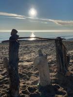 Lake Michigan log structure