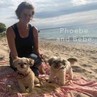 Phoebe & Bebe