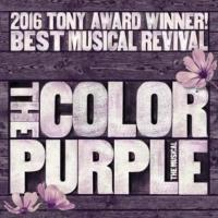 The Color Purple Playhouse