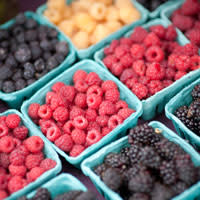 Berries at the Farmers Market by Vernon Williams