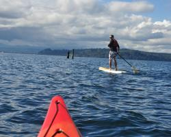 Kayak and Paddleboard