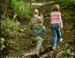 Nature Trails at GCVM