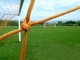 Soccer net by Annette Crimmins