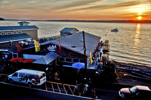 Experience Sea Life in the Pacific Northwest for Free at saltys Redondo