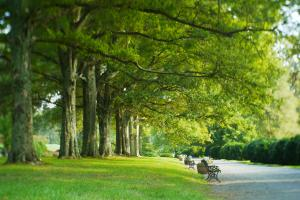 Morven Park