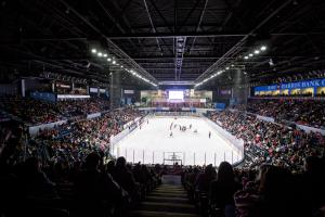 IceHogs crowd