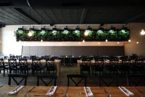 Dining room at Wolf's Ridge Brewing with wooden tables, hanging lights and a wall of live plants