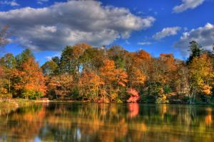 Golden fall foliage reflects off the calm waters of Fuller Lake in Pennsylvania.