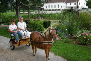 Amish and Mennonite Communities in LaGrange County