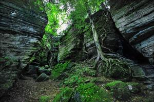 Panama Rocks