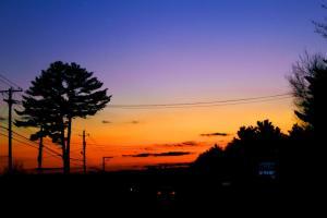 Sunset on the Street