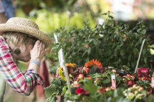 Women Looking at Flowers at Wilmington's Flower Market