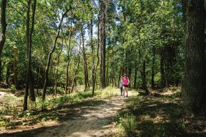 Hiking The George Mitchell Nature Preserve