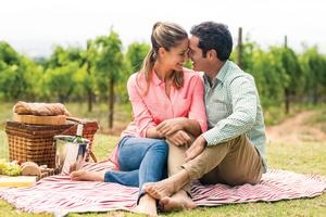 Taste of Napa Valley A couple enjoying a picnic in the vineyards.