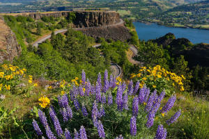 columbia river scenic byway oregon