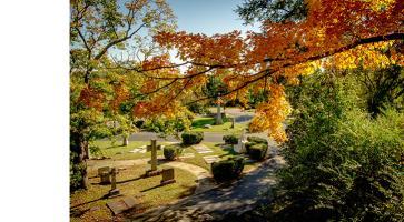 Hollywood Cemetery bump