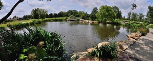 cox arboretum