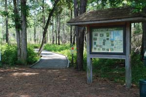 Flytrap Trailhead at Carolina Beach State Park
