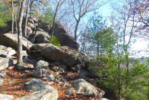 Little Rocky Ridge, Michaux