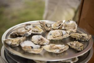 NC Oyster Fest_oysters