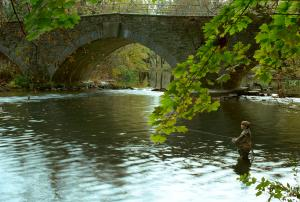 Man Fishing By A Bridge on the Yellow Breeches Creek In The Cumberland Valley