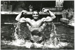 Arnold - FLEX