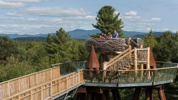 Observatory deck designed to look like a nest at Wild Center and Wild Walk in the Adirondacks