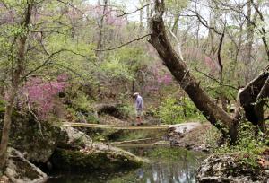 Elk City State Park Trail