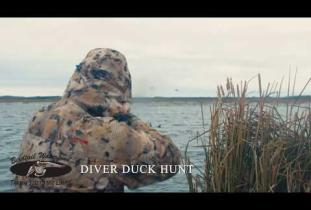 Diver Duck Hunting with Birdtail Waterfowl
