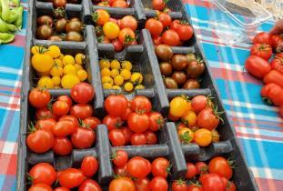 Russell Farmers' Market