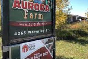 Aurora Farm