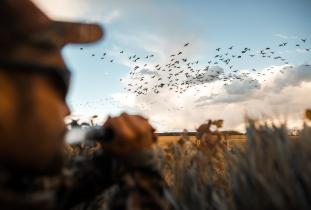 Licensed Manitoba Waterfowl Guide